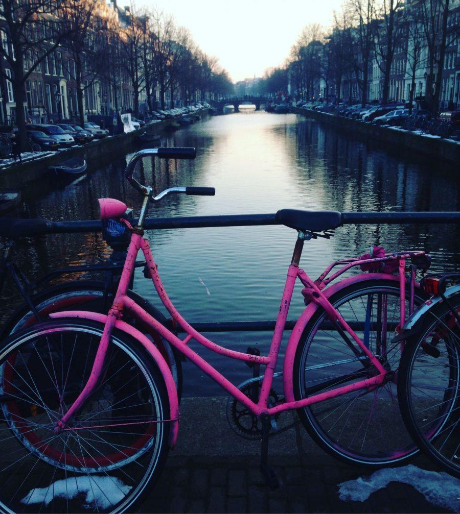 A Photo Tour of Amsterdam